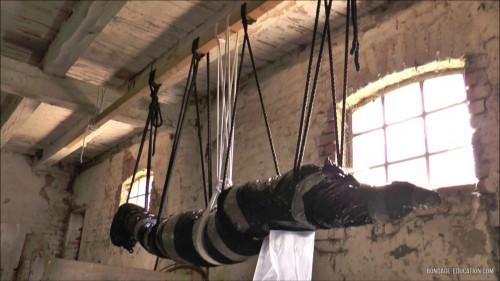 Hardcore Mummification SuspensionIn The Barn