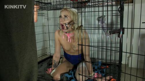 Best New Bdsm Petgirls Collection part 2