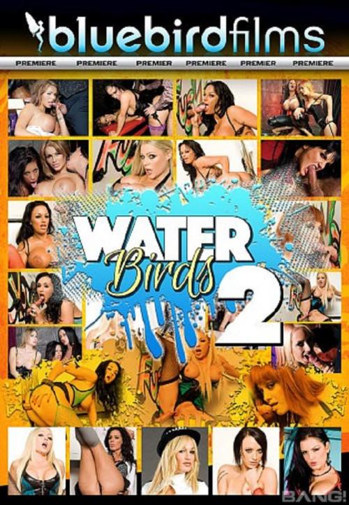 Waterbirds vol 2