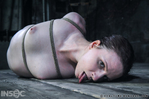 Claire Adams - Duct Fuct Doll Part 2 BDSM