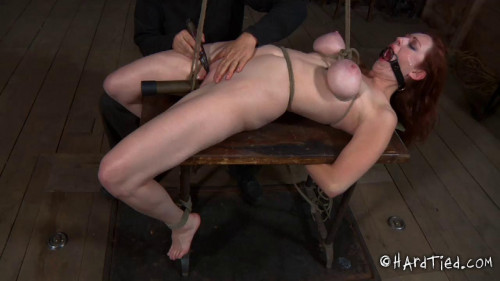 Hot Weather, Hot Holly Holly Wildes BDSM