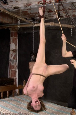 Insex - Mollys Live Feed March 31 RAW