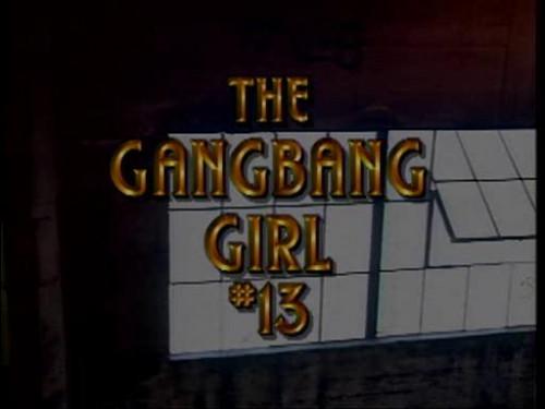 Gang bang girl  vol.13
