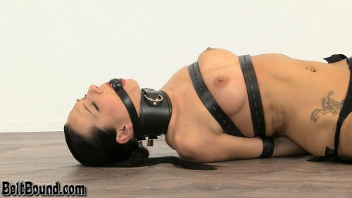 Posture Collar And Black Ball Gag BDSM