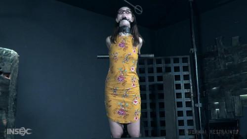 Bdsm HD Porn Videos Newbie Knockout