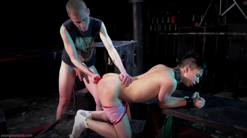 Young Bastards - Obedient Pup Services Hung Master