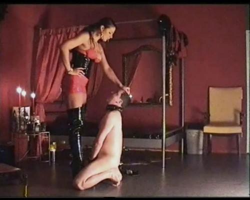 Strapon Fucksters Men Anus – Lady Asmondena