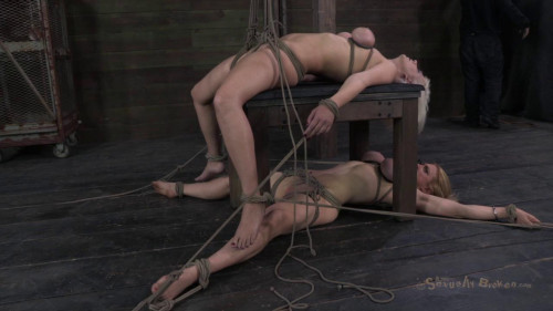 Fantastic double category FIFTH back breaking suspension
