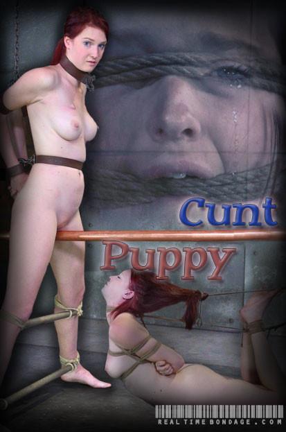 Cunt Puppy Part 2 BDSM