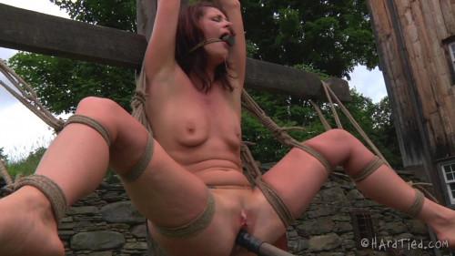Cici Rhodes - Stuck in the Mud BDSM