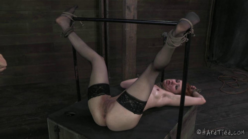 Calico – BDSM, Humiliation, Torture HD-1280p