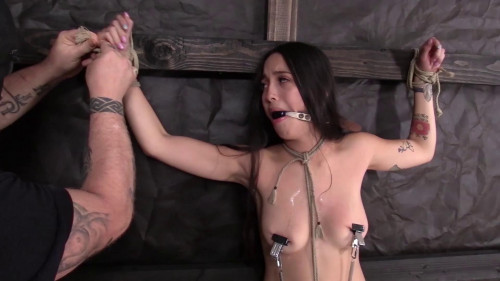 The first scene begins with Joanna BDSM