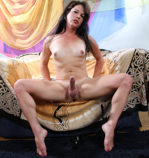 My Hot Tranny Cock is all for You
