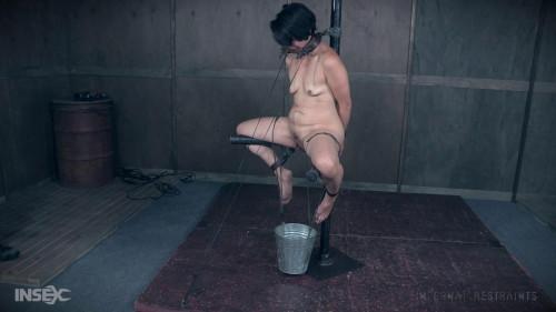 Mia Torro Buckets of Fun (2017) BDSM