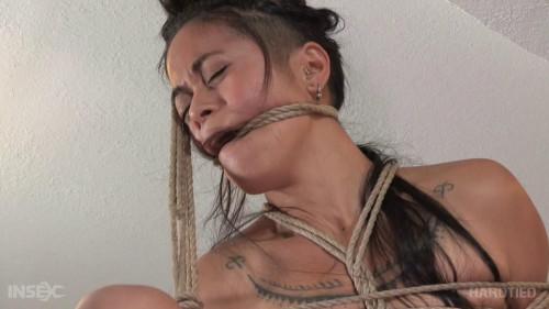 The Curious Artist, Part 2 BDSM