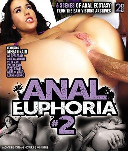 Anal Euphoria, Vol. 2