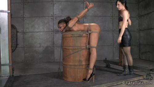 Nikki Darling My Time In The Barrel