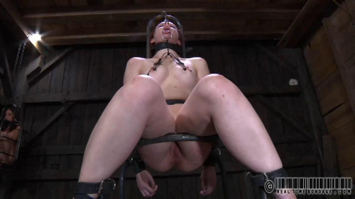 HazelNut Part Two Hazel Hypnotic BDSM