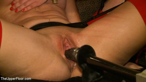 Alone with The Steward BDSM