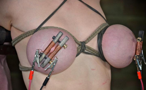 Electrical Bliss For Nipple