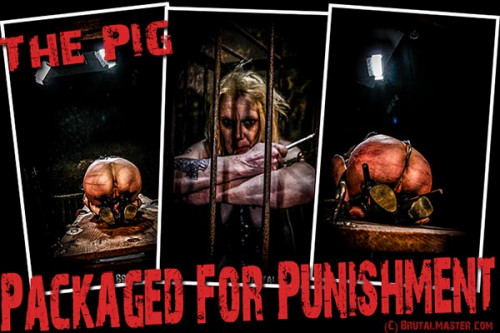 The Pig - Packaged For Punishment