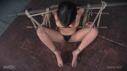 Raquel Roper - Rope Her and Pole 720p BDSM
