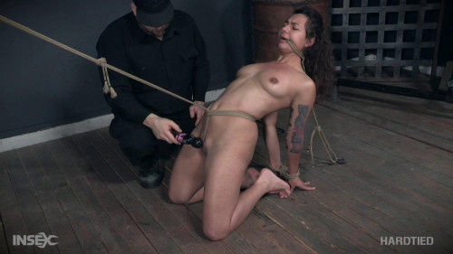 Piggy In a Hogtie BDSM