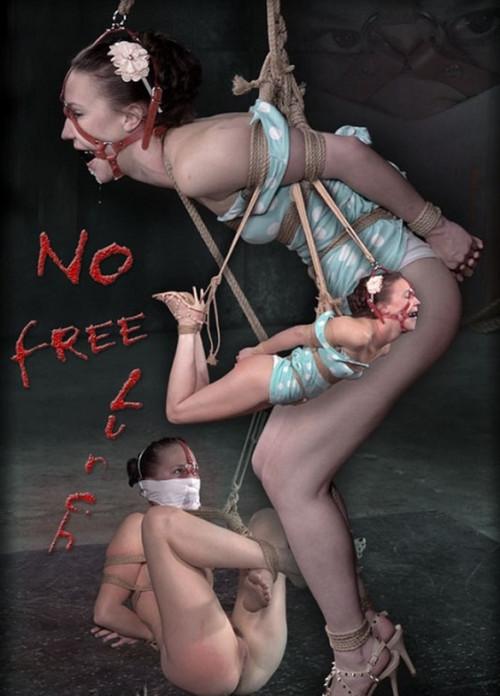 No Free Lunch – Bonnie Day