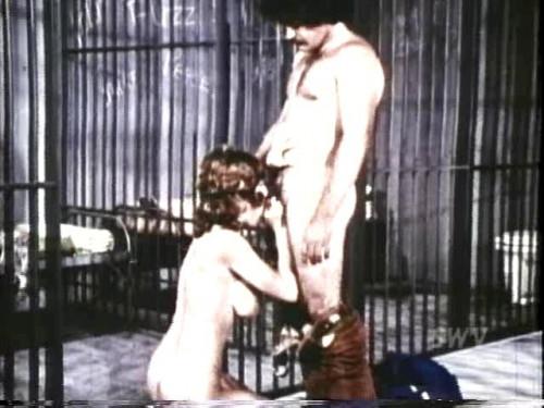 Sex Asylum Vintage Porn