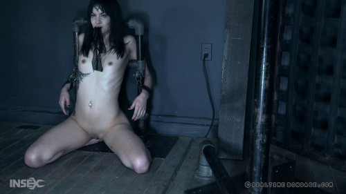 Lovely Suffering: Part 2 BDSM