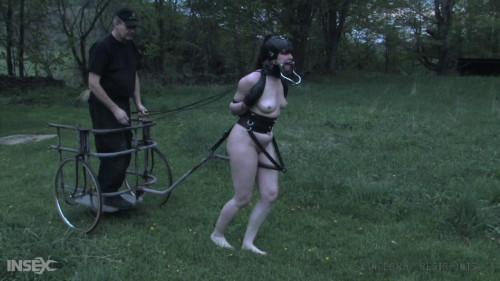 Ponygirl Anna Rose Tied Up & Punished Hard