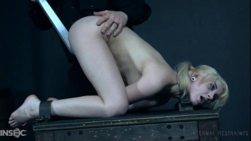 Honey, I Shrunk You! BDSM
