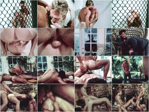 fs - Against The Rules Gay Retro