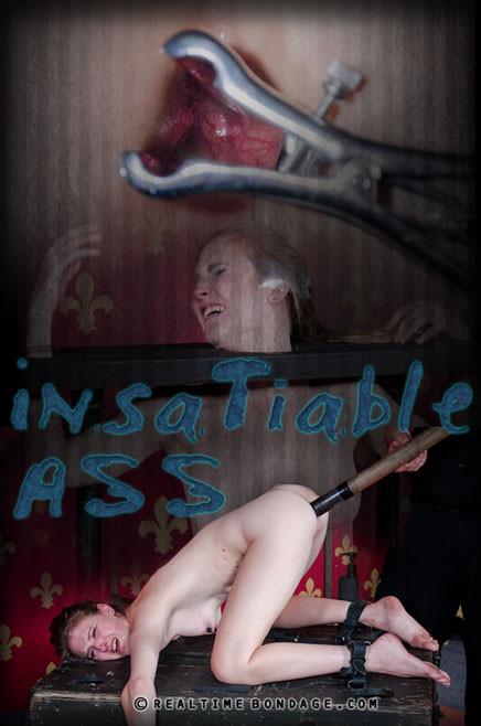 Insatiable Ass Part 2 , Ashley Lane