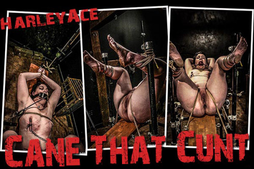 BM Harley - Cane That Cunt
