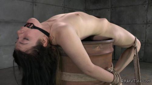 Harley Ace Tied Up BDSM