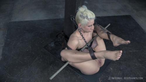 Dylan Phoenix BDSM