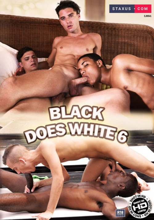 Black Does White Pt 6 Gay Movies