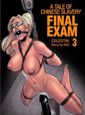 Fansadox BDSM Porn Comix Collection Comics