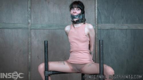 Sitting Pretty -  Charlotte Sartre