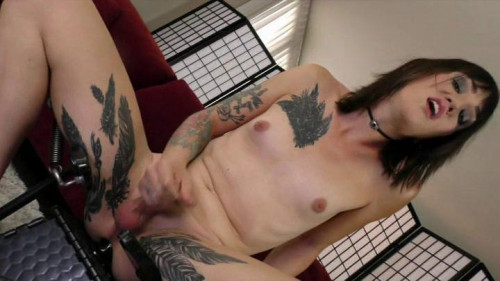 She Male Strokers scene Hairypussy