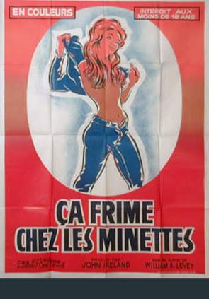 Ca frime chez les minettes (VHSRip)