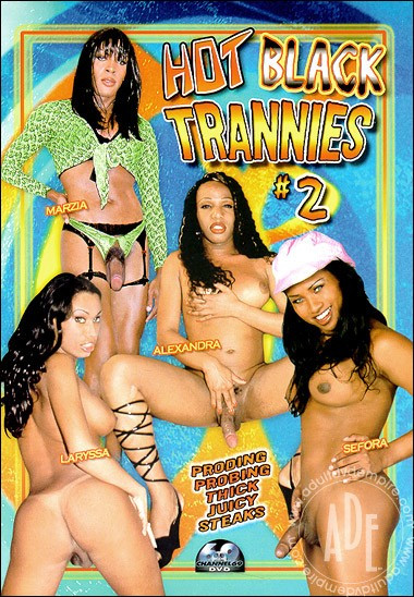 Hot Black Trannies vol.2