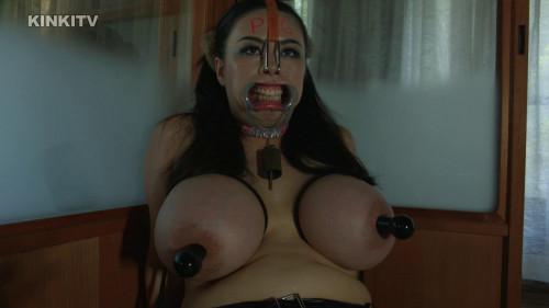 Japan bondage pig part 1 Asians BDSM