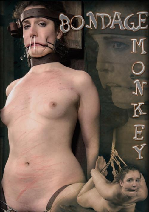 Bondage Monkey 2
