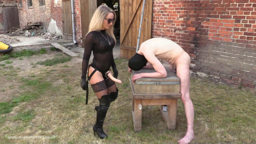 Strap-On In The Sun At The Farm