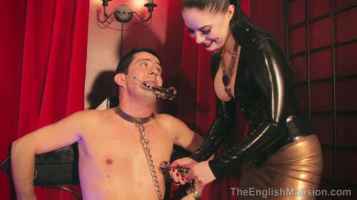 An Orgasmic Dinner - HD 720p