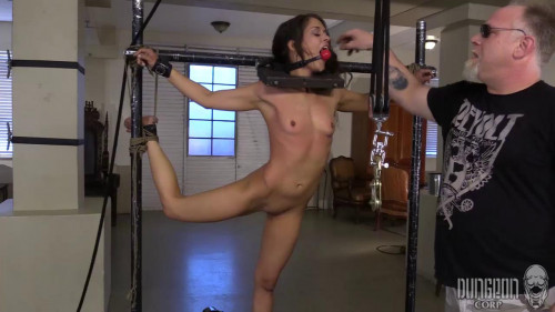 Training the Tease part 1