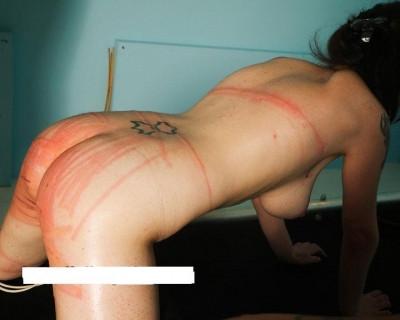 Elite Pain - Slave Disciplinary Program 1
