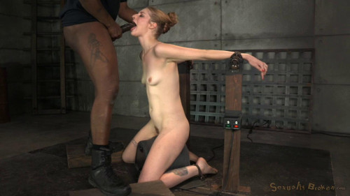 Bound with belts on top of a sybian